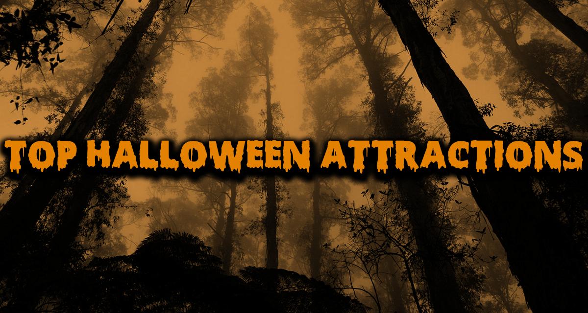 Top Halloween Attractions   Social Findlay